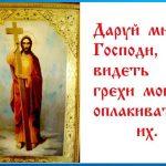 Даруй мне, Господи, видеть грехи мои и оплакивать их